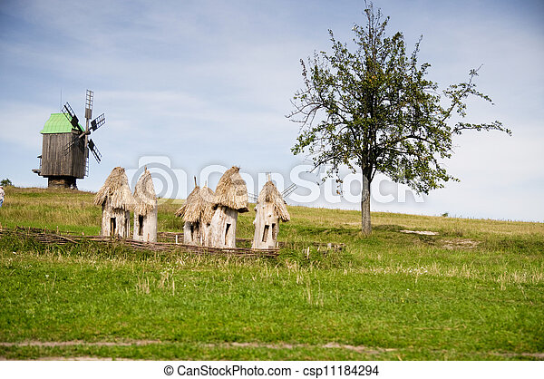 Beautiful rural cottage in summer  - csp11184294