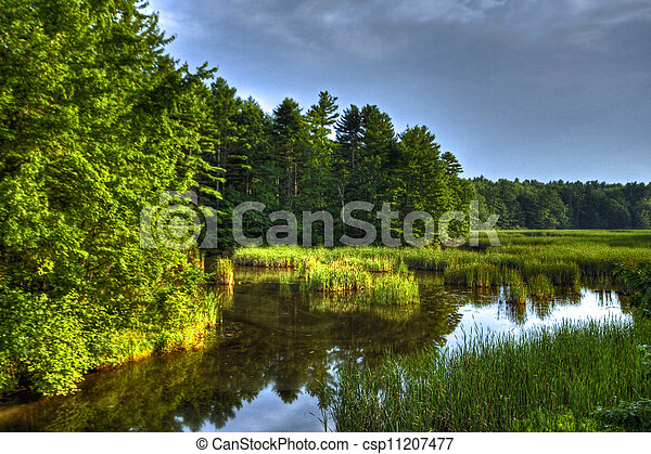 Picture of scarborough marsh 63 marsh land in for Free land maine