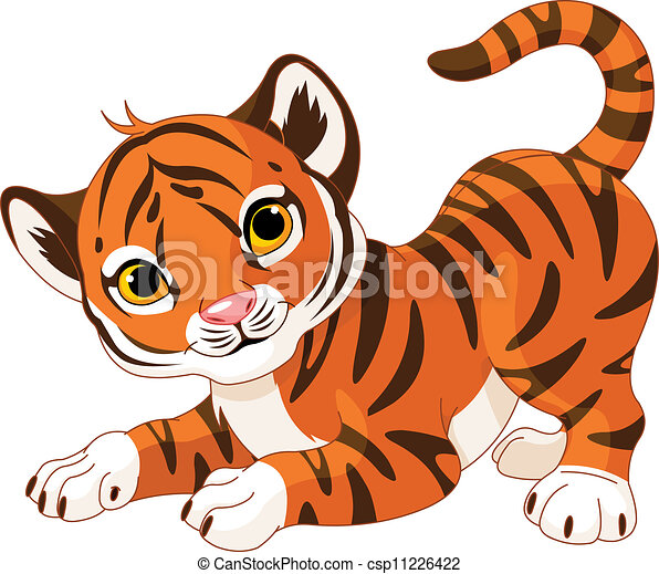 Playful tiger cub  - csp11226422