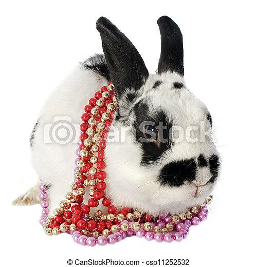 gratis svenska knullfilmer rabbit pearl