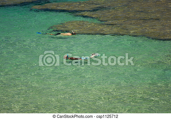 Snorkelers in the Bay - csp1125712
