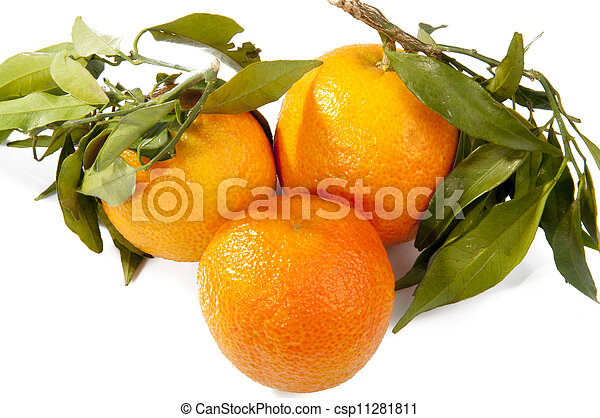 fresh tangerine fruits with green leaves isolated - csp11281811