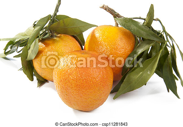 fresh tangerine fruits with green leaves isolated - csp11281843