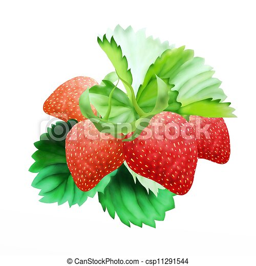 Hand Drawing of  Fresh Ripe Red Strawberries - csp11291544