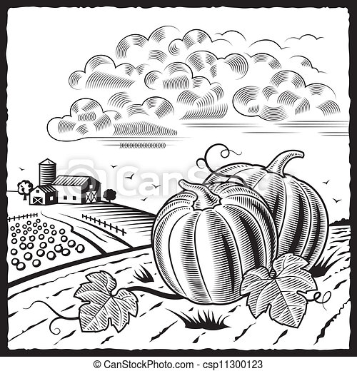 Landscape With Pumpkins Bw 11300123 additionally Plan details in addition  likewise Cinquante Hirondelles 15026704 moreover rmgwildlife co. on barn plans