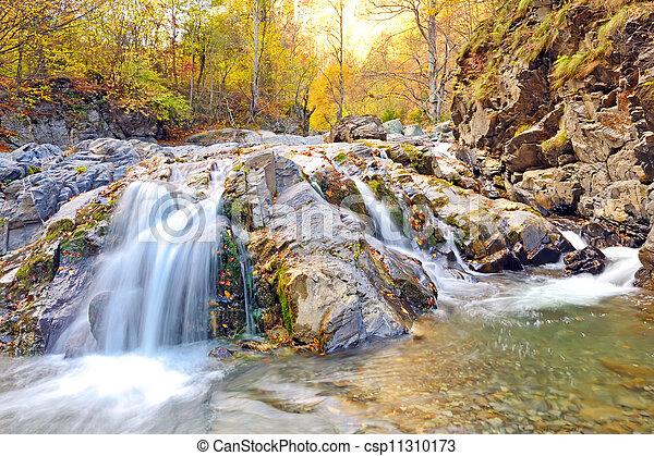 Autumn Falls - csp11310173