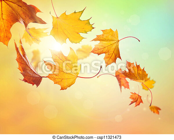 Autumn falling leaves - csp11321473