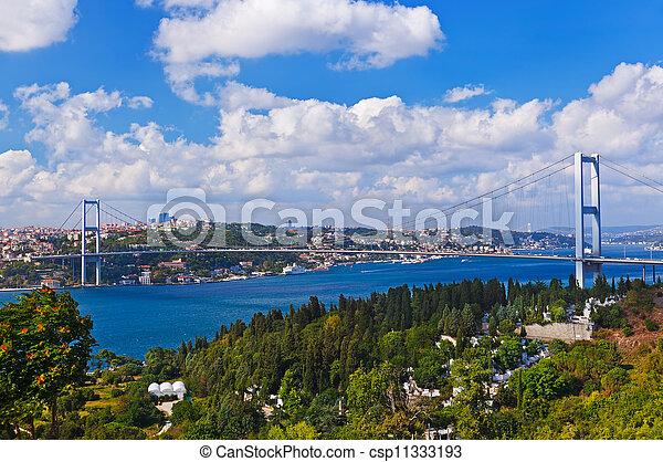 Bosphorus bridge in Istanbul Turkey - csp11333193
