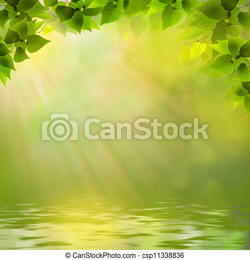 Sunny day on the forest lake, abstract natural backgrounds - csp11338836