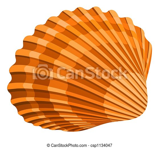 stock illustrations of seashell illustration of seshell sea shells clip art black and white sea shells clip art free images