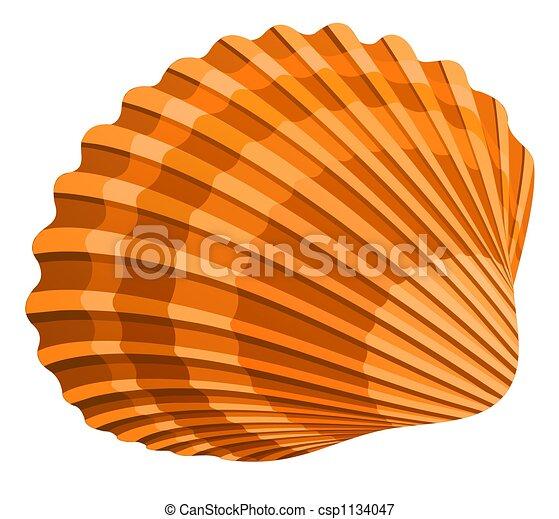 Clip Art Seashell Clip Art seashell illustrations and stock art 6637 illustration of seshell isolated on white