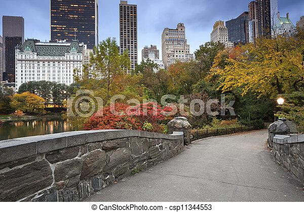 Central Park and Manhattan Skyline. - csp11344553