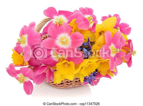 Easter Basket - csp11347526
