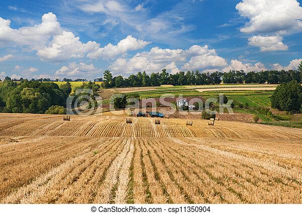 Rural landscape - csp11350904