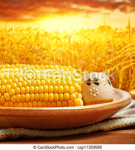 Corncob over sunset - csp11359589