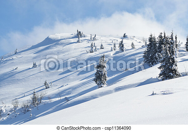 Winter calm mountain landscape with snow covered firs - csp11364090