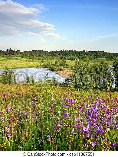 spring landscape - csp11367551