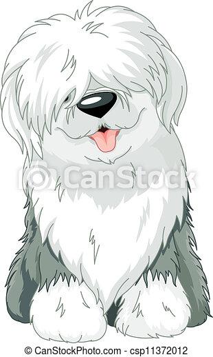 Old English Sheepdog - csp11372012