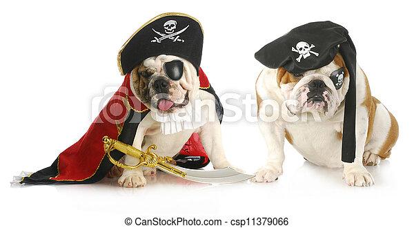 dog pirates - csp11379066