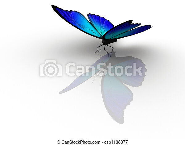 Butterfly 1 - csp1138377