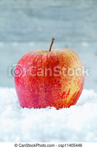 Fresh apple in winter snow - csp11405446