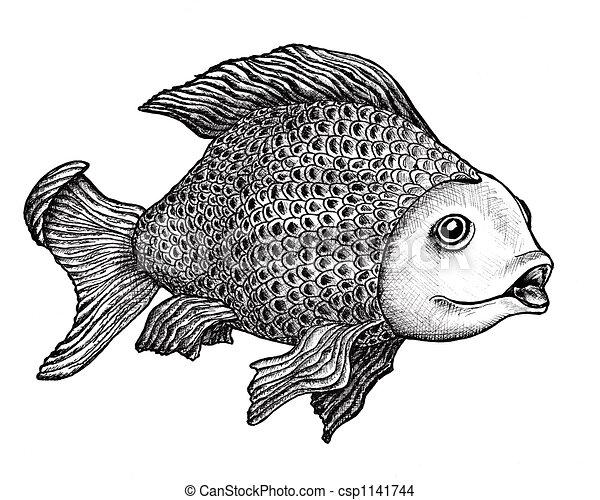 Dibujos de pez dibujo tinta dibujo de un grande for Imagenes de peces chinos
