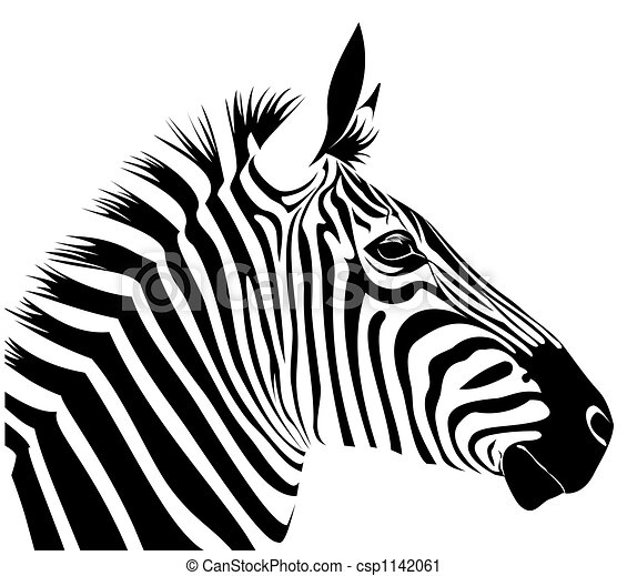 Zebra - illustration o...