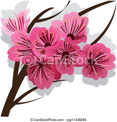 Stock de Ilustraciones de rama, Florecer, Cereza, árbol, sakura ...