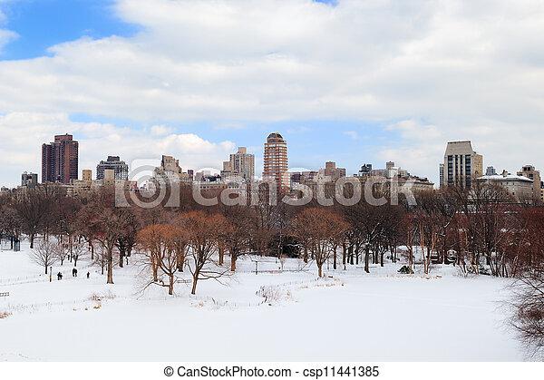 New York City Manhattan Central Park in winter - csp11441385