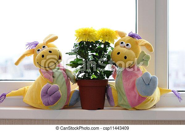 Yellow chrysanthemums on a window sill - csp11443409