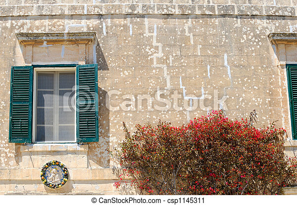 Flowers, Window & Wall - csp1145311