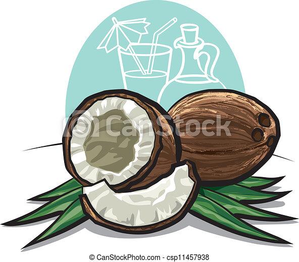 Vecteurs de noix coco csp11457938 recherchez des images - Dessin noix de coco ...