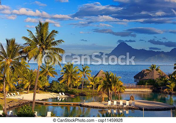 Ocean at sunset. Polynesia. Tahiti.   - csp11459928