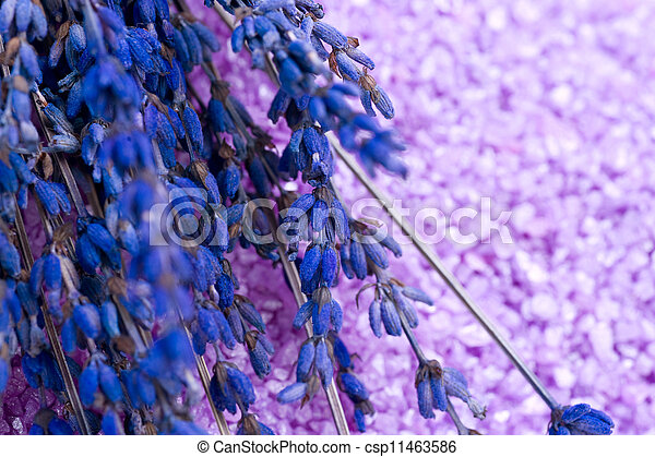 Lavender Spa treatment - csp11463586