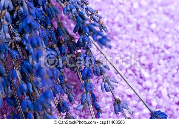 Lavender Spa treatment  - csp11463586