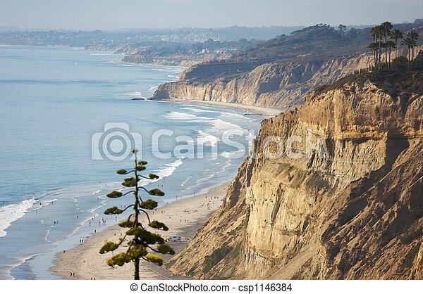 Torrey Pines Beach and Coastline - csp1146384