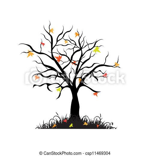 Maple Tree Drawing Autumn Maple Tree