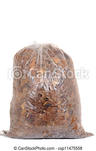 Bag of fall leaves for recycling - csp11475558