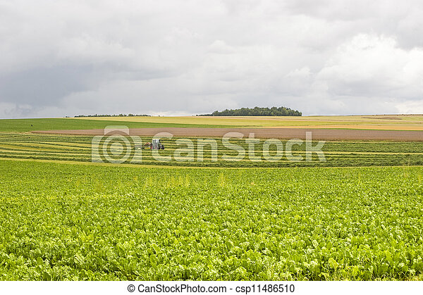 Agriculture in France - csp11486510