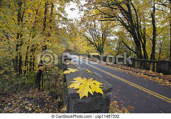 Autumn Along Historic Columbia Highway Bridge - csp11487332