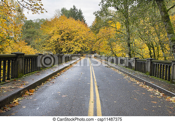 Autumn Trees Along Historic Columbia Highway Bridge - csp11487375