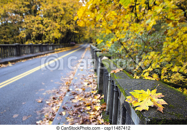 Fall Leaves Along Historic Columbia Highway Bridge - csp11487412
