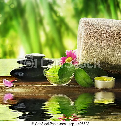 Spa Treatment  - csp11496602