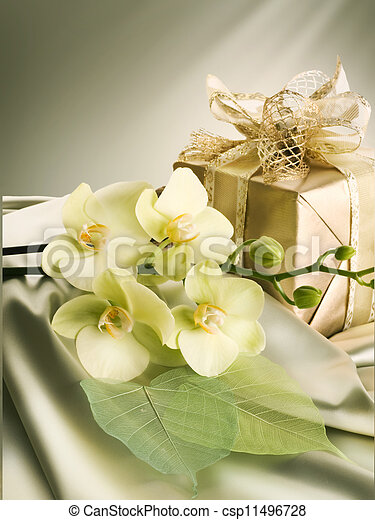 Valentine's Day Gift - csp11496728