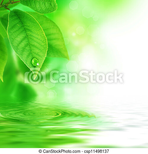 hermoso, escena, naturaleza - csp11498137