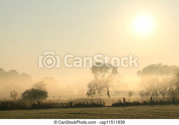 Rural landscape at dawn - csp11511839