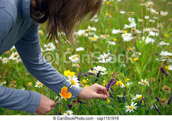 Stock Image Of Lady Picking Flowers Lady Picking Up Wild