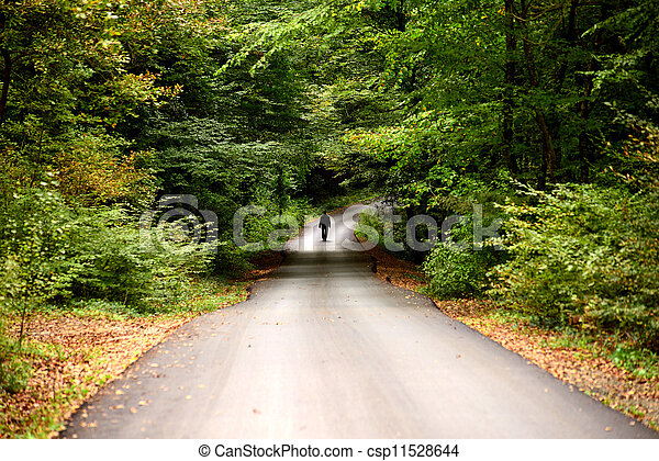 man walking alone on the road in the forest