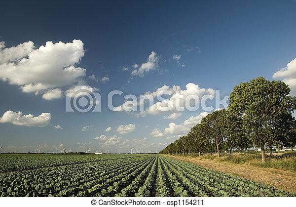 landwirtschaft - csp1154211