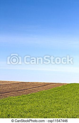Agriculture - csp11547446